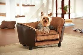 designer dog bed furniture. Interesting Bed Fancy Dog Beds House Furniture Size  Stylish Australia  To Designer Dog Bed Furniture
