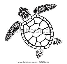 Small Picture Turtle Stock Images Royalty Free Images Vectors Shutterstock