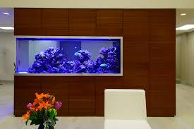 office aquariums. Custom Aquariums Office S