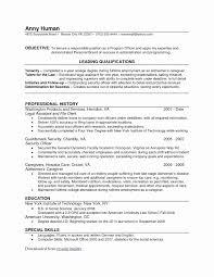 Unique 19 Luxury Printable Resume Templates Online Resume Builder