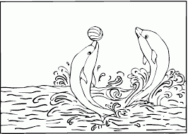 Small Picture Printable Coloring Pages Dolphins Coloring Pages