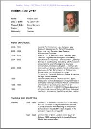 English Resume English Resume Template