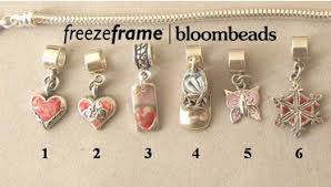 pandora style charms made from flower petals freezeframeit
