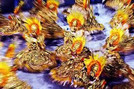 Resultado de imagem para alas de escolas de samba