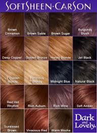 Dark N Lovely Hair Color Chart Helps You Determine Hair
