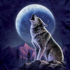 howling wolf moon drawing. Unique Wolf Howling Wolf  TShirtVortex In Moon Drawing L