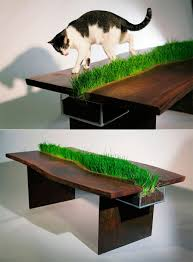 Cat Table Grass Furniture