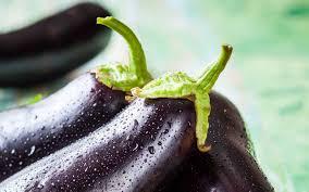 Slikovni rezultat za patlıcan