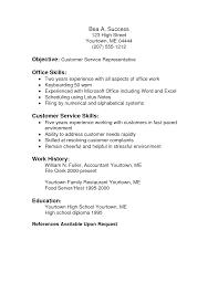 Resume Skills Customer Service Representative Sidemcicek Com