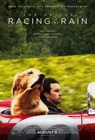 The Art of Racing in the Rain (film)