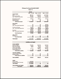 10 Pro Forma Financial Statements Template Proposal Sample