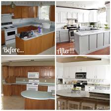 Nuvo Cabinet Paint Reviews Kitchen Furniture 43 Excellent Ash Kitchen Cabinets Pictures