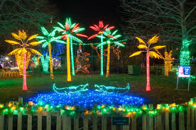St Louis Zoo Wild Lights