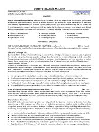 Lovely Forensic Accountant Curriculum Vitae Ideas Professional