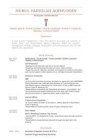 freelance tour guide tour leader event liaison travel consultant resume samples junior travel consultant resume