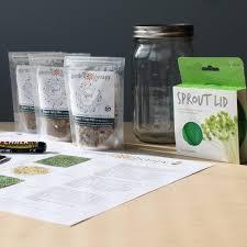 mason jar sprouts kit