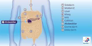 De, alvleesklier - oorzaken van Kanker