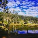 imagem de Mandirituba Paraná n-17