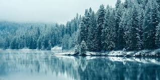 background pictures nature winter. Nature Winter Snow Twitter Cover Background TwitrCovers On Pictures