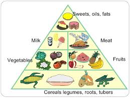 Make A Chart Of Balanced Diet Is Breakfast The Most Important Meal For Weight Loss