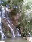 imagem de Jaboticaba Rio Grande do Sul n-16