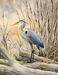 great blue heron painting natures wonder by james williamson