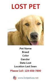 Lost Pet Flyer Maker 40 Lost Pet Flyers Missing Cat Dog Poster