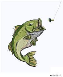 bass fish by ovalbrush