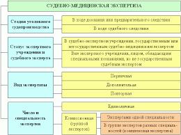 Судебно медицинская экспертиза Рис 2 2 Процессуальный формат судебно медицинской экспертизы