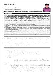 Career Overview Resume Gorgeous SRIDHARANR RESUME