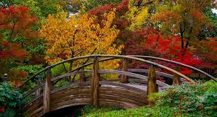 The Fort Worth Japanese Garden