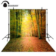 <b>Allenjoy photography background Autumn</b> leaves beautiful dream ...