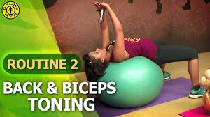 Golds Gym At Home Workouts Routine 2 Upper Body Strengthening Back Biceps