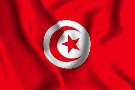 E Dinar Price Chart Tunisia Launches E Dinar Coin The Cryptonomist