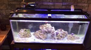 Fluval Sea Marine Reef 3 0 Spectrum Led Light Fixture Fluval 2 0 Marine And Reef 25k Led Light Review