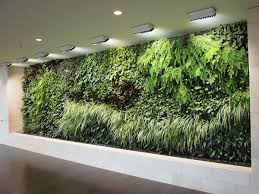 How To Plant a Drought Tolerant Living Wall Garden