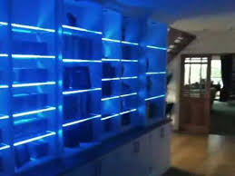glass shelf lighting. Colour Changing LED Lights On A Bookcase With Glass Shelves YouTube Throughout Led Lighting Shelf Ideas 11