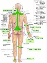 51 Right Nerve Endings In Feet Chart