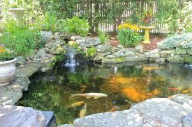 Backyard Fish Pond Diy Swimming Kits Home Depot. Backyard Koi Pond Diy  Ponds With Waterfall Kit. Backyard Fish Ponds Pictures And Waterfalls Pond  Winter.