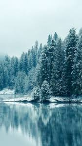 winter wallpaper iphone hd. Delighful Winter Love This Beautiful Frosty Winter Lake With Ice And Tress Filled Snow  Love It Looks Sooo Really Want To Go Here Wherever Place  Intended Winter Wallpaper Iphone Hd