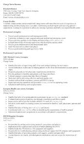 Er Charge Nurse Sample Resume