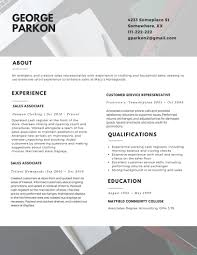 Resume Template The Professional Layout 2017 For Of A 89