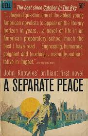 best a separate peace images a separate peace essays on a separate peace higher learning 25 books about teachers schools in literature