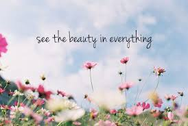 See The Beauty Quotes Best of See The Beauty In Everything Quotes Pinterest Wisdom