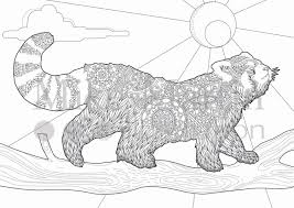 Small Picture Sheets Red Panda Coloring Pages 88 About Remodel Coloring Pages
