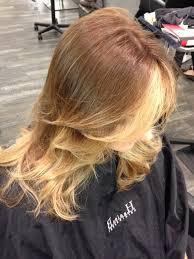 Light Brown At The Roots Top