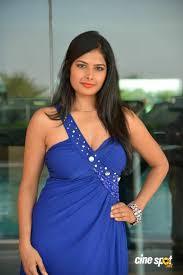 Priyanka Shah at Kingfisher Fashion Week Event (13)