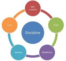 quick book reports to excel attorney representative cases resume self discipline essay