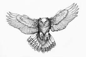 Resultado de imagen de owl illustration tattoo