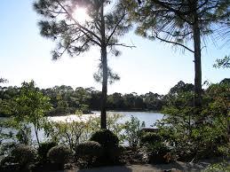 the morikami museum and japanese gardens florida